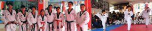 academia camargo taekwondo academia