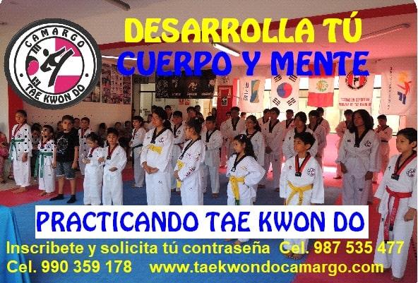 practicando taekwondo